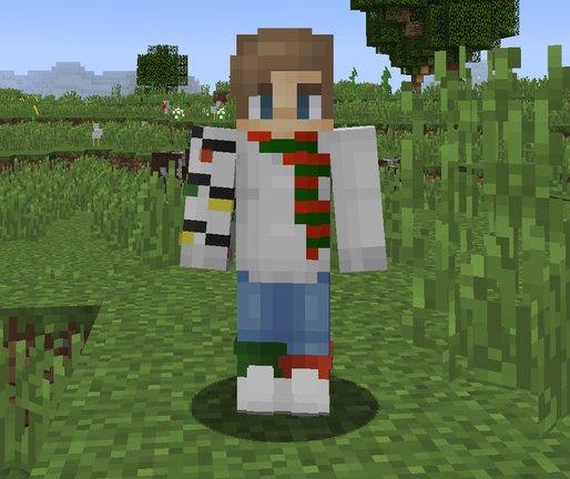 grass minecraft skin