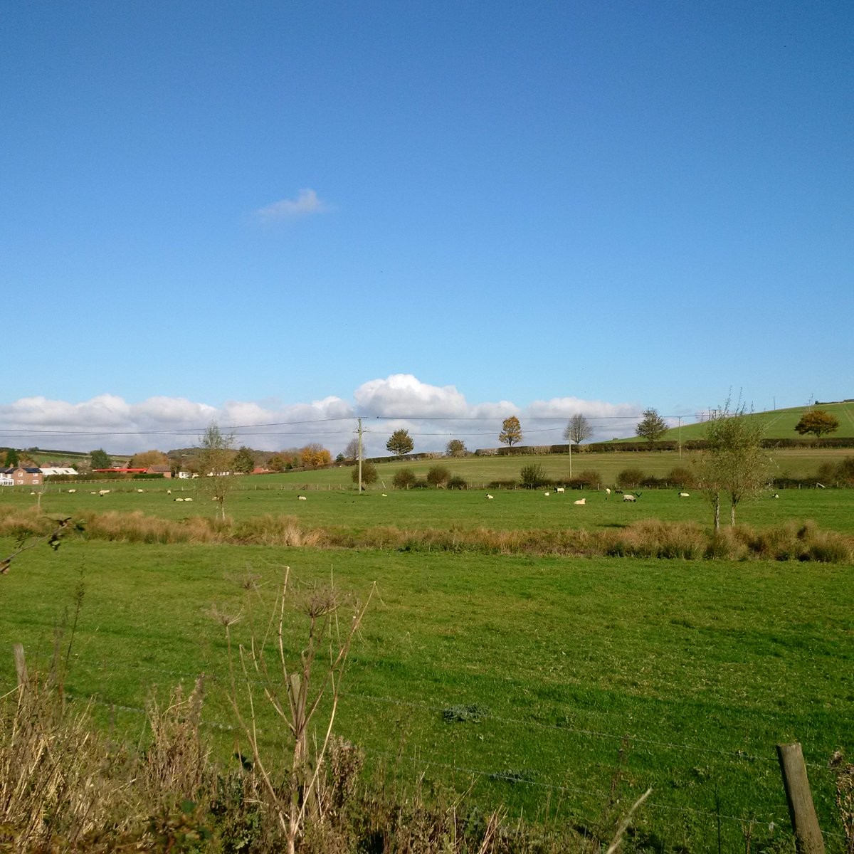 Connect West Berkshire Planning A Walk In WestBerkshire Catch Kennections Bus 4 To The Lambourn Valley Get Free App