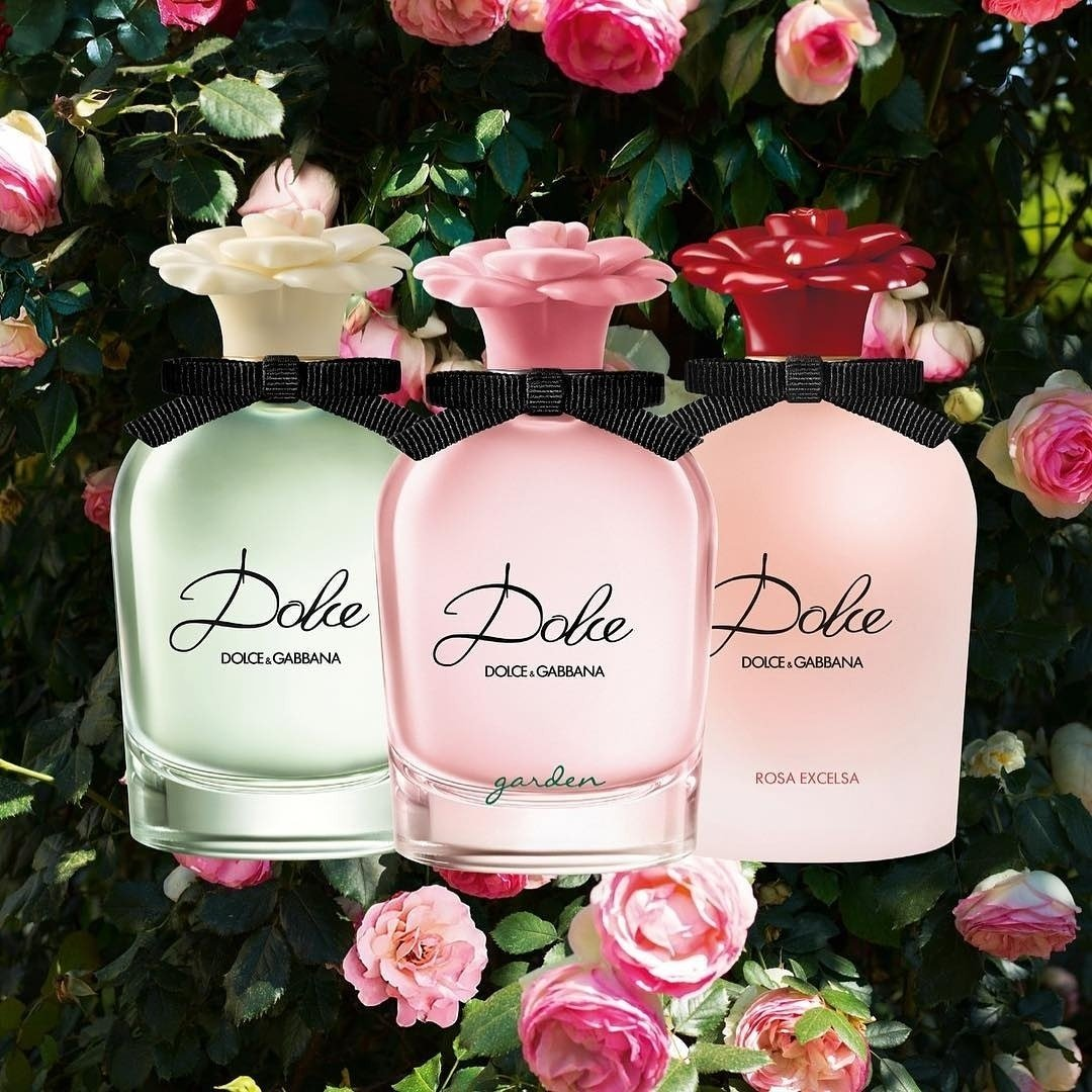 b2682bb3 ... still bloom in Fall time: Dolce Eau de Parfum, Dolce Garden and Dolce  Rosa Excelsa. . . . #DGBeauty #DGDolce #DGDolceGarden #DGDolceRosaExcelsa # perfume ...