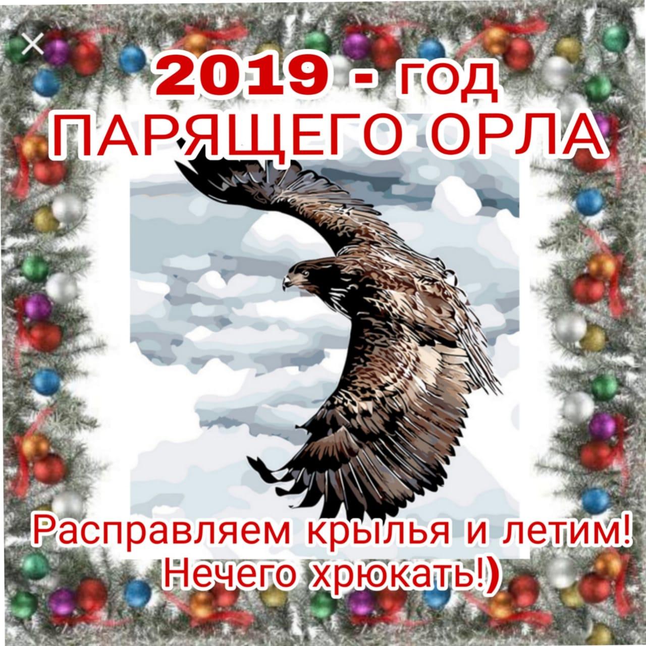 Картинки с надписями год парящего орла