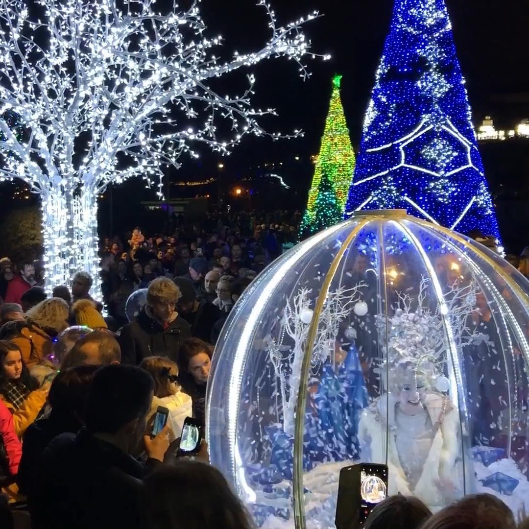 Christmas Tree Wonderland Bournemouth Coastal Bid.Christmas Tree Wonderland Bournemouth Coastal Bid
