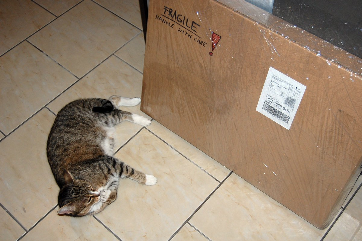 """One of my #paintings titled """"Arche II"""" has been sold and is heading to a new home in UK ... and only my #cat is unhappy because she can't play with the box :( #buyart #buyartonline #cats #artlife #artistsandtheircats #catvsbox #supportart #investinart<br>http://pic.twitter.com/RKvfikqNeW"""