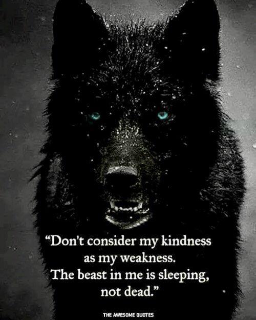 Etiqueta #wolfspirit al Twitter