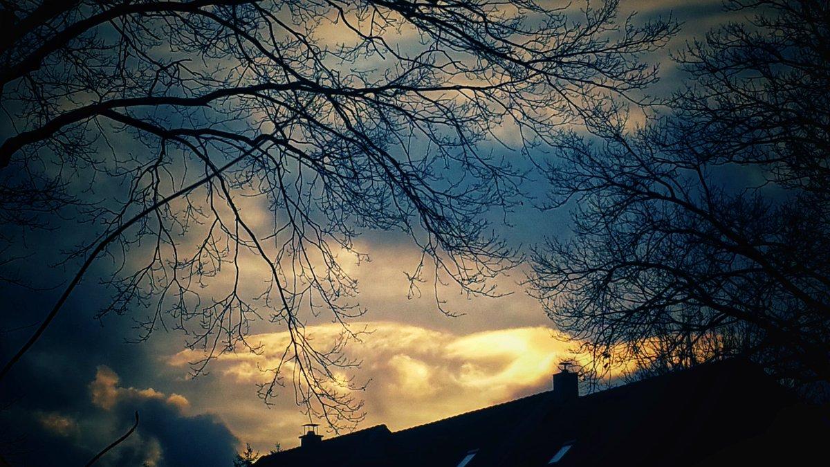 Engel On Twitter Einen Wunderschönen Guten Morgen