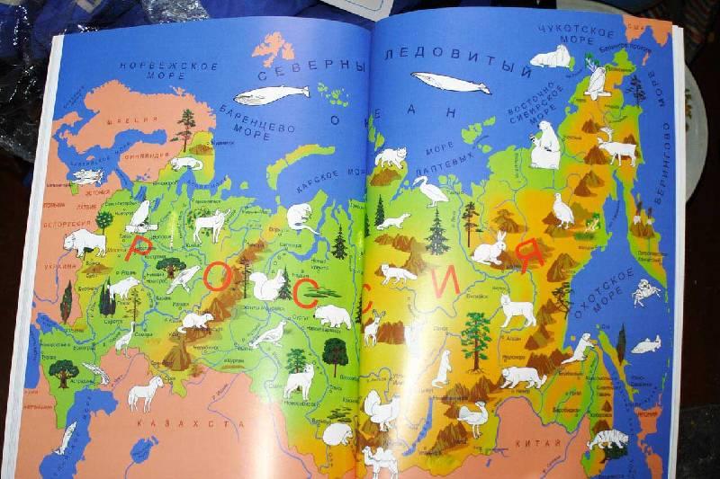 картинки животных россии на карте популярнейшей полуторатонной