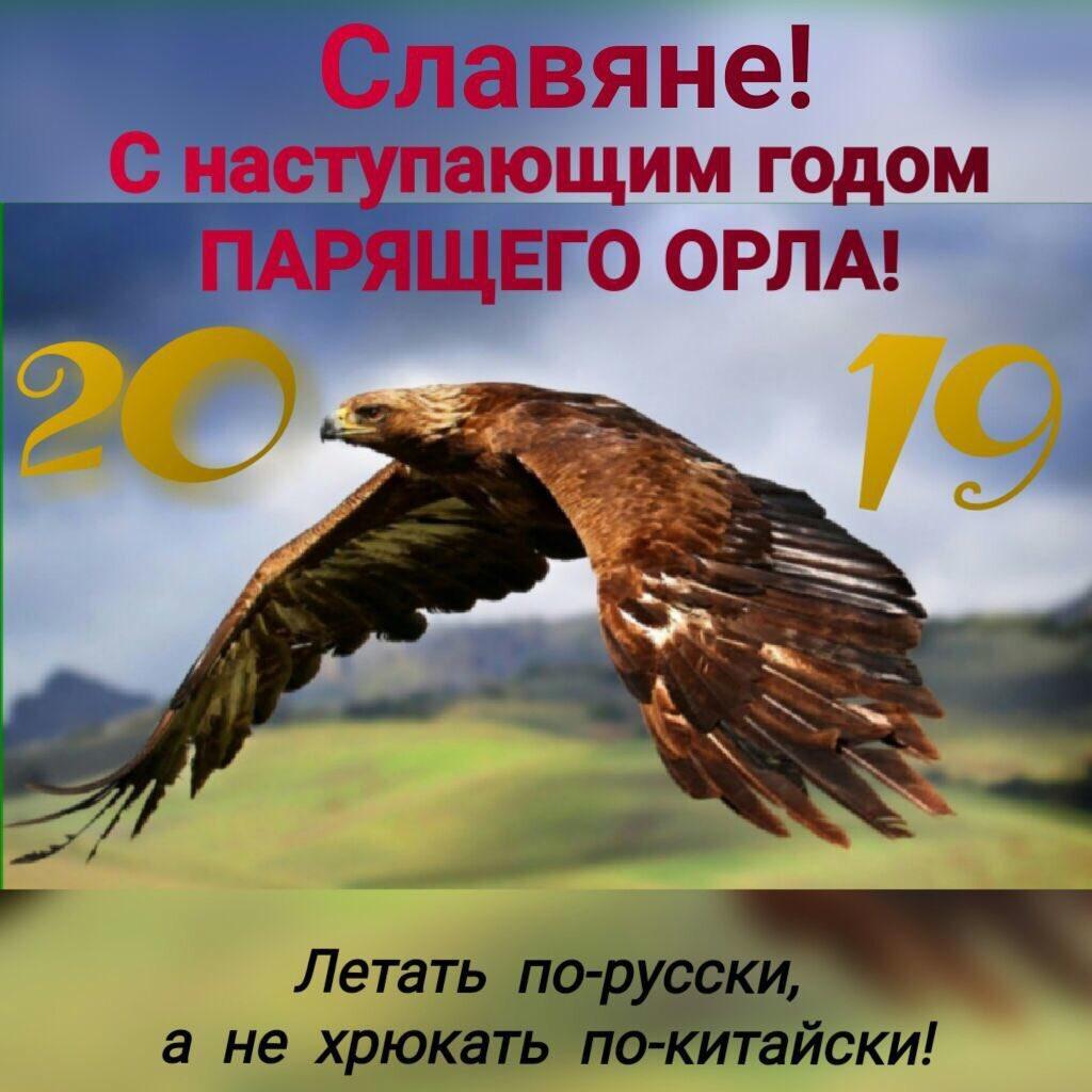 Открытки с годом орла, сплетникам необычная