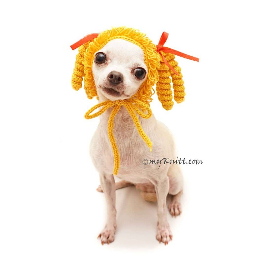 e34d2f9bb365 myknittdogclothes: Super Funny Dog Wigs.. Tell me if I already look like an