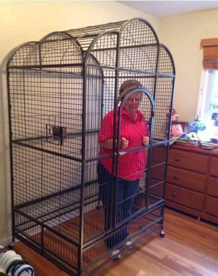 RT @Jack_WRLD: Announce lineup before Friday and I let my Nan out @tramlines https://t.co/aFJEcdpvfx