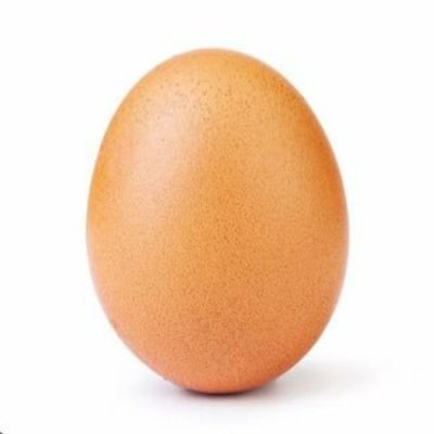 RT and like and I will photoshop your pfp on this egg
