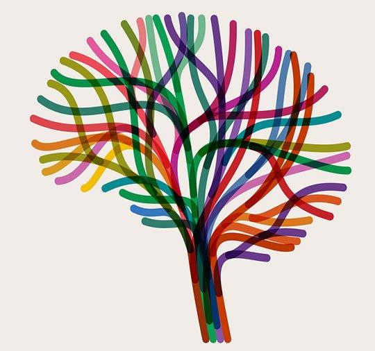 The Brain Retrieves Memories In Reverse, Study Finds (S) https://t.co/kTWbjuOwg3 #MentalHealth #Wellness #HealthNews