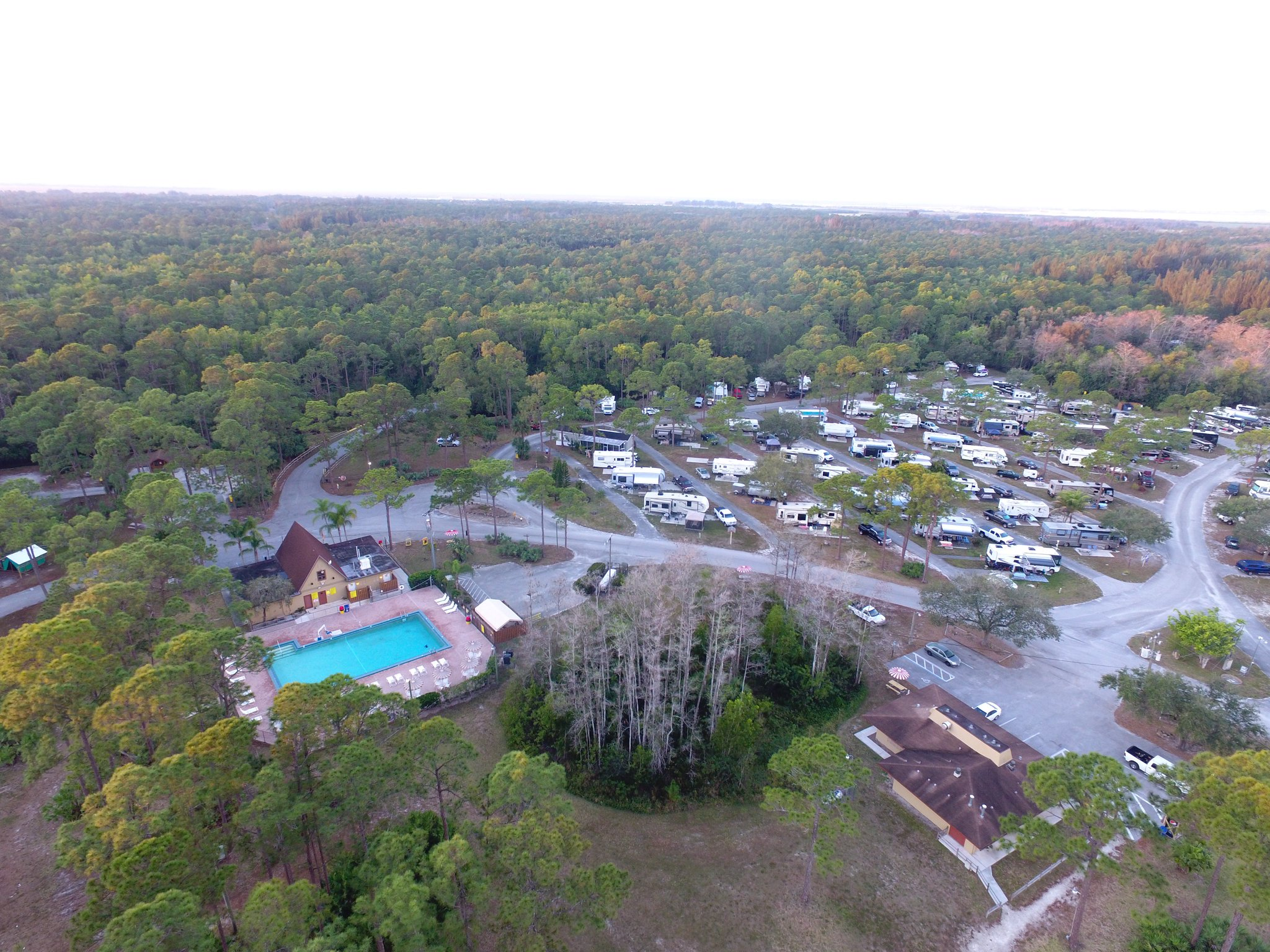 """Lion Country Safari on Twitter: """"A6: For some WILD camping fun, make it a  #FamilyAdventure at our #KOA campground 🏕️ . Sleep to the sounds of  night-time Africa & wake to the"""