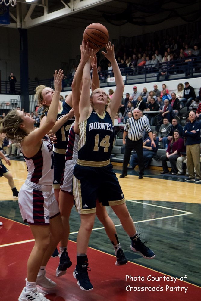 Image result for norwell lady knights basketball