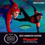 Spider-Man Twitter Photo