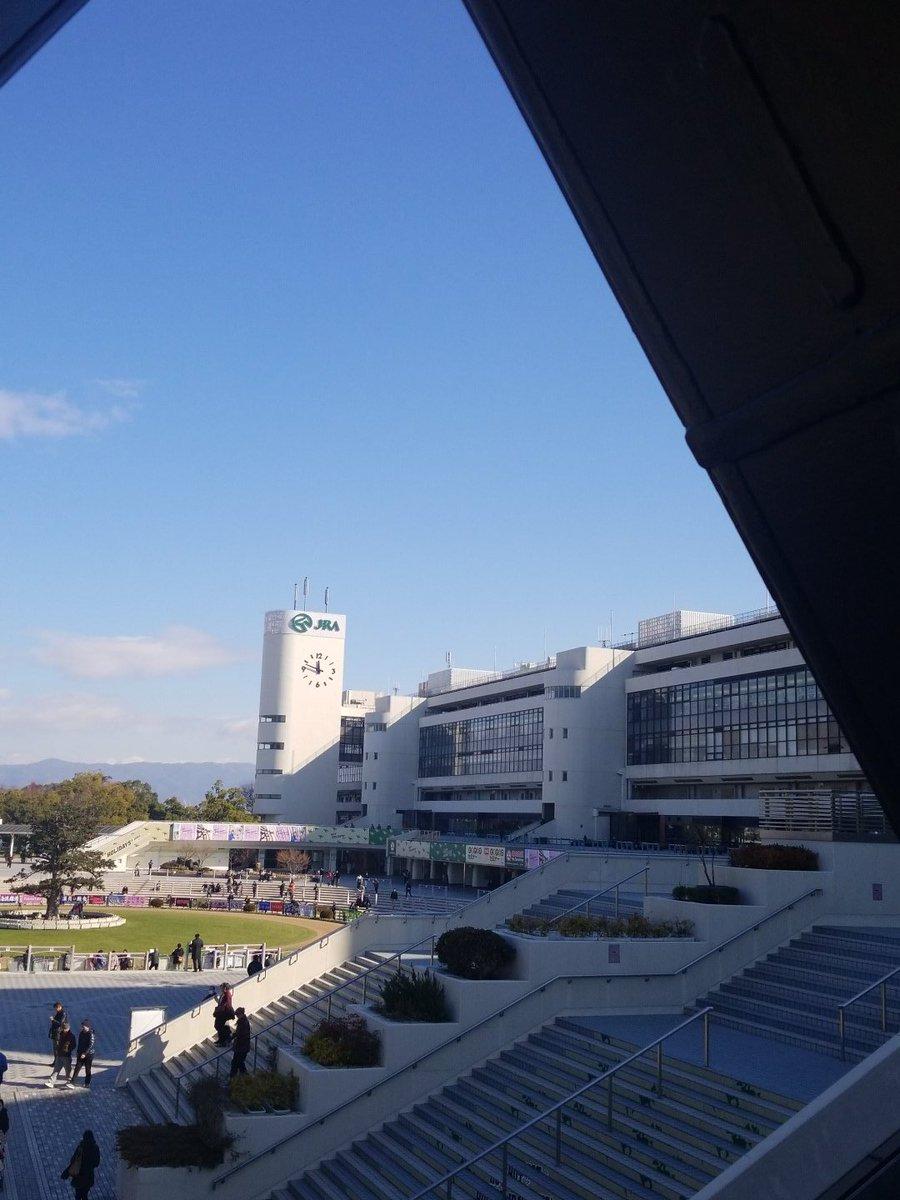 京都 競馬 場
