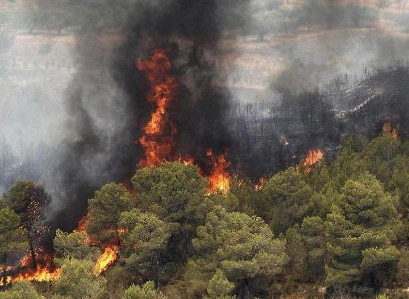 test Twitter Media - Golestan National Park is facing the danger of Wildfires every year.Our today Agreement w/ the Department of Environment is about Using Techs (incl IOT and #Satellite imagery)for Preventing&Fighting wildfires.These pics tell us how an ounce of prevention is worth a pound of cure. https://t.co/OJvpSQWwe7