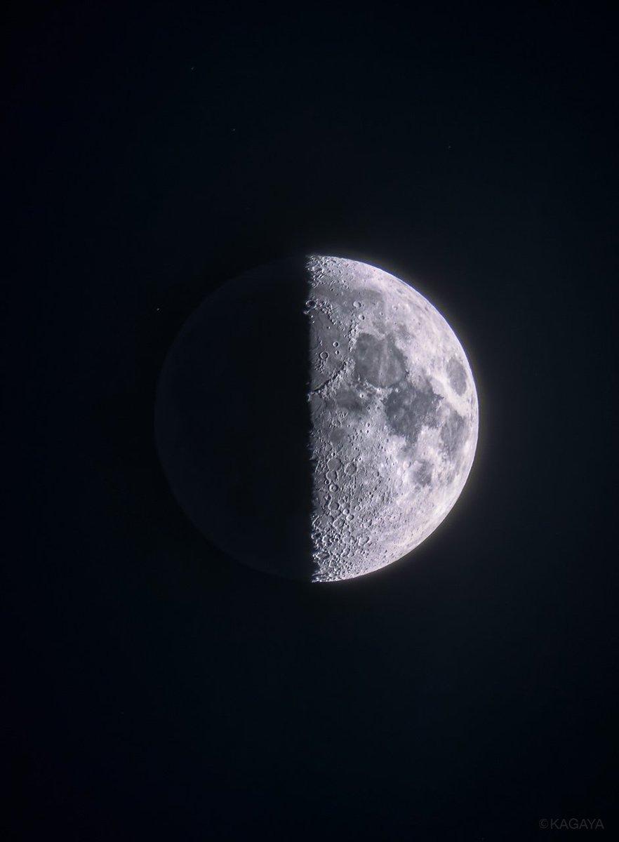 空をご覧ください。 西に上弦の月が輝いています。 (写真は今望遠鏡を使って撮影したものです) 南には冬の大三角が高く昇りました。 今週もおだやかな一週間になりますように。