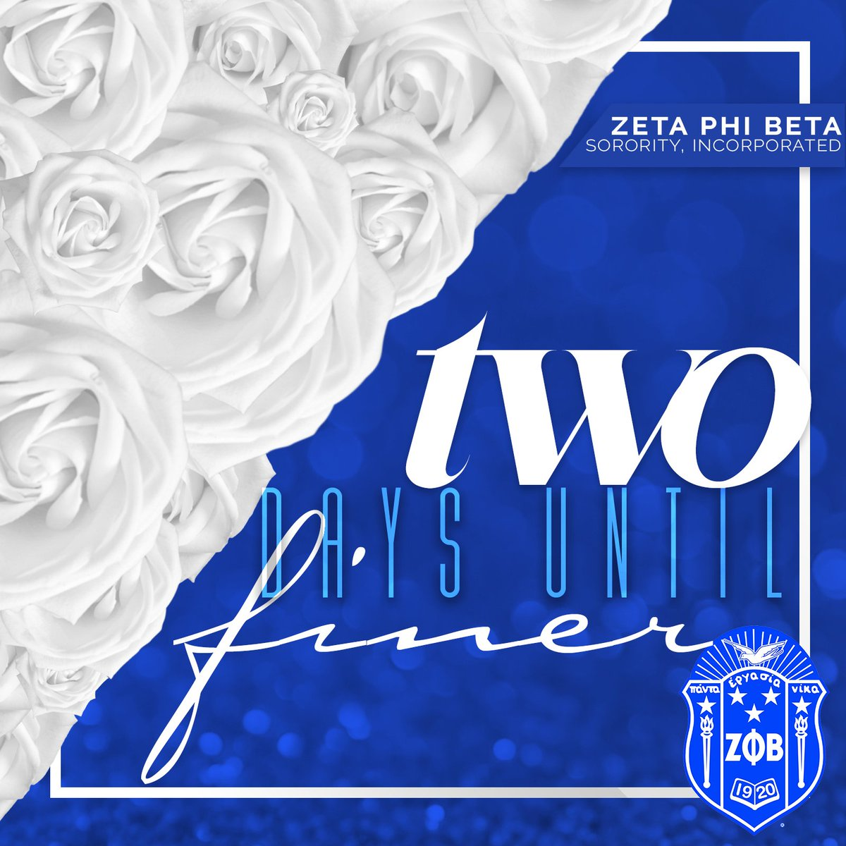 We reflect on our legacy as we embrace the journey to centennial. #99andfiner #zphib99