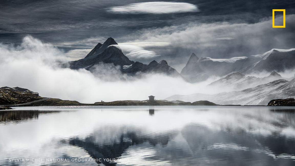 Top Shot: From Behind The Fog https://t.co/dvIaGiSRiG #YourShot