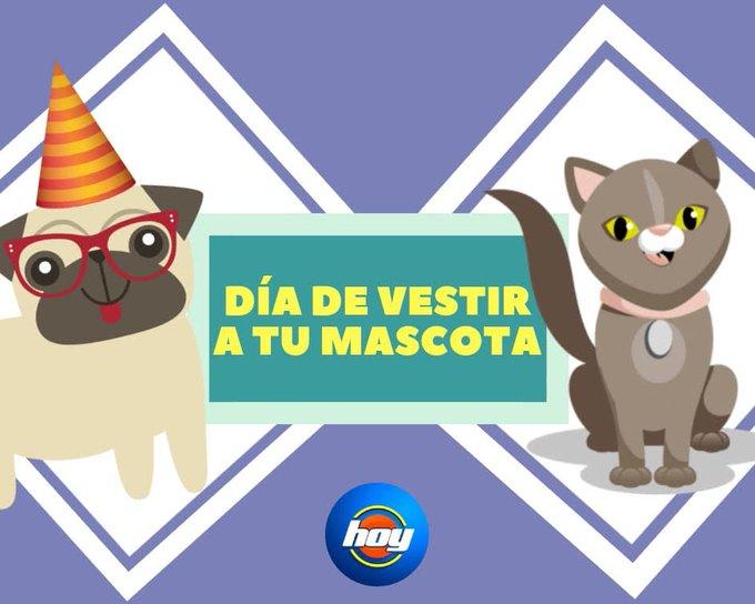 Hoy se celebra el Día de vestir a tu mascota 🐶❤🐱 ¡Envíanos su fotografía y únete a nuestra conversación con #MiMascotaEs! Foto