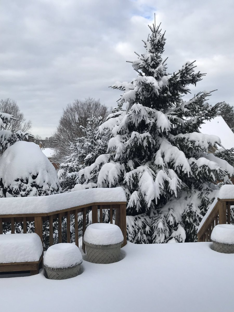 We had some more serious snow here in the DC area. It sort of reminds me of my youth growing up in beautiful Western New York.