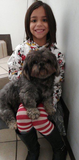 @programa_hoy #MiMascotaes Mi Ponky hermoso es el hijo de mi nena desde hace 2 años, lo amamos al peludo Foto