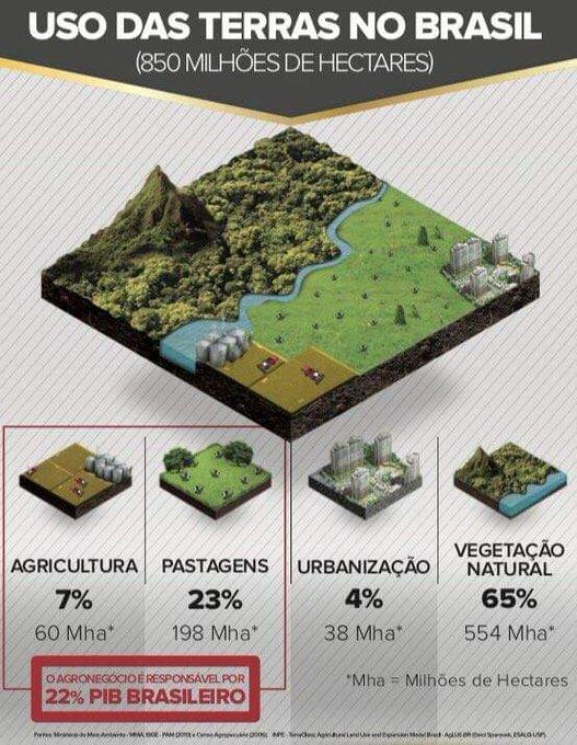 Dá uma olhada Gisele Bündchen. Você fala mal do Brasil em relação ao meio ambiente e o agronegócio brasileiro. Nosso território é o mais preservado, mesmo com a produção de alimentos. Produziremos mais, pois temos totais condições para tal. Foto