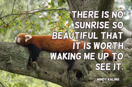 There is no sunrise so beautiful that it is worth waking me up to see it.—Mindy Kaling #quote Photo