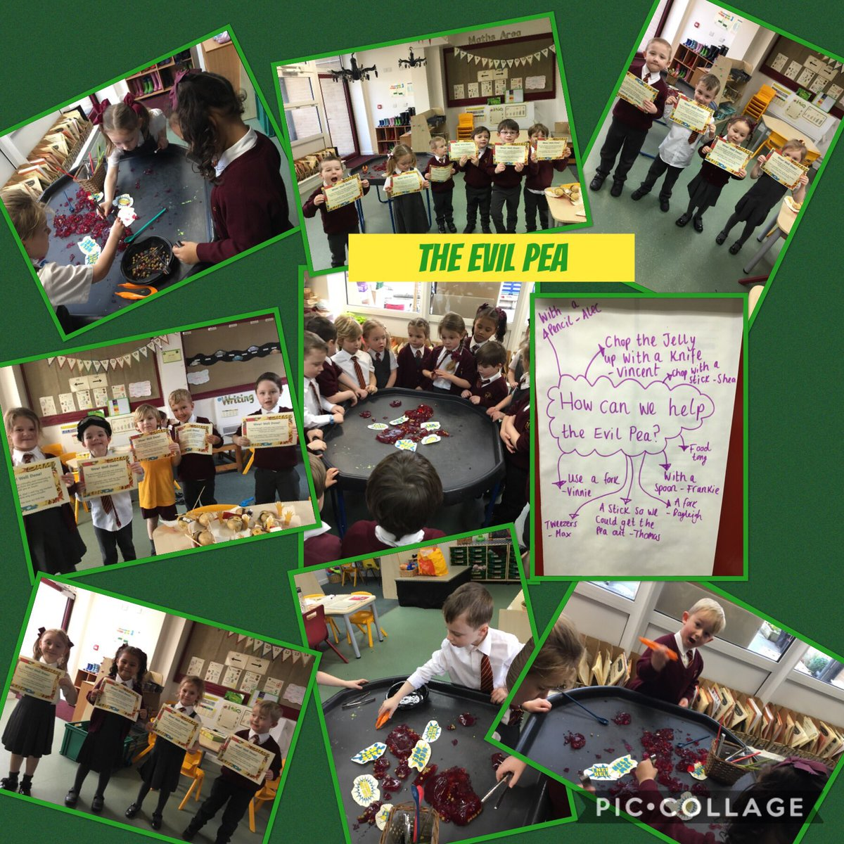We had to think critically of ways we could rescue the Evil Pea without touching the poisonous jelly. When we successfully rescued the Pea we got a certificate! Using tweezers helps us with our fine motor skills #Supertato #evilpea #finemotor