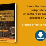 Image for the Tweet beginning: 📖 ⚖️ #Ebook : les