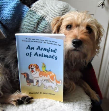 &#39;Heartfelt stories that animal-lovers &amp; pet-lovers will adore.&#39;  &#39;An Armful of Animals&#39; by @ MalcolmWelshman. Free on KindleUnlimited.  #IARTG IAN1 RRBC books ebooks giftideas #veterinarymedicine veterinarian Amazon US:  http:// tinyurl.com/y88hh6pq  &nbsp;   Amazon UK:  http:// tinyurl.com/y8qnbscv  &nbsp;  <br>http://pic.twitter.com/gdzwBQU5TG