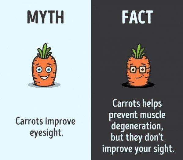 Do Carrots Improve Your Eyesight