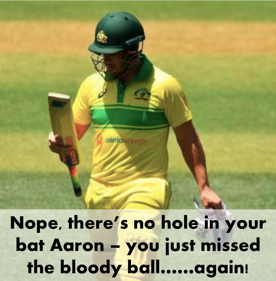 guysbeingguys's photo on aaron finch