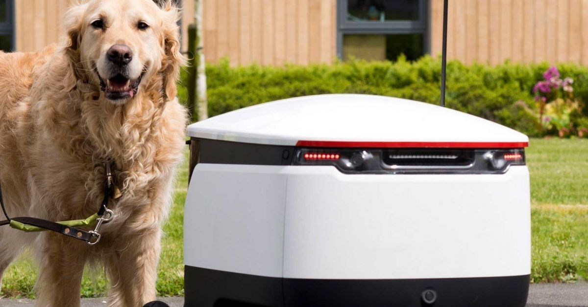 Guide dogs respond better than many humans to autonomous robots https://t.co/QRq2EusN69 #dogs #robotics #pets #AI