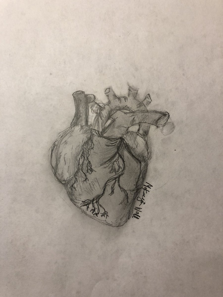 Natalie Wall Md On Twitter Today My 14 Year Old Sister Told Me She Wants To Be A Cardiothroacic Surgeon Or A Fashion Designer When She Grows Up And Then Drew Me This