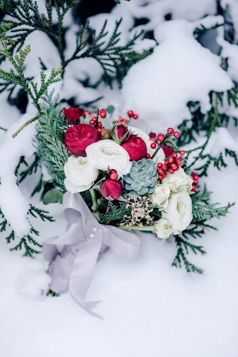 Подарок марта, открытка цветы зима