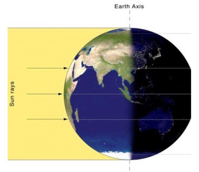 earths surface alb seasonal - 768×651