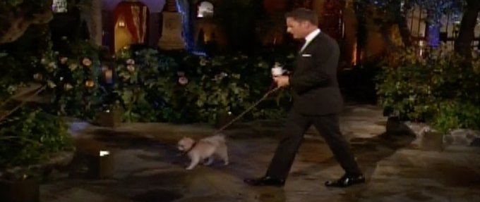 Bachelor 23 - Colton Underwood - Episode Jan 7th - *Sleuthing Spoilers* - Page 2 DwJr7iAWoAA4DBq