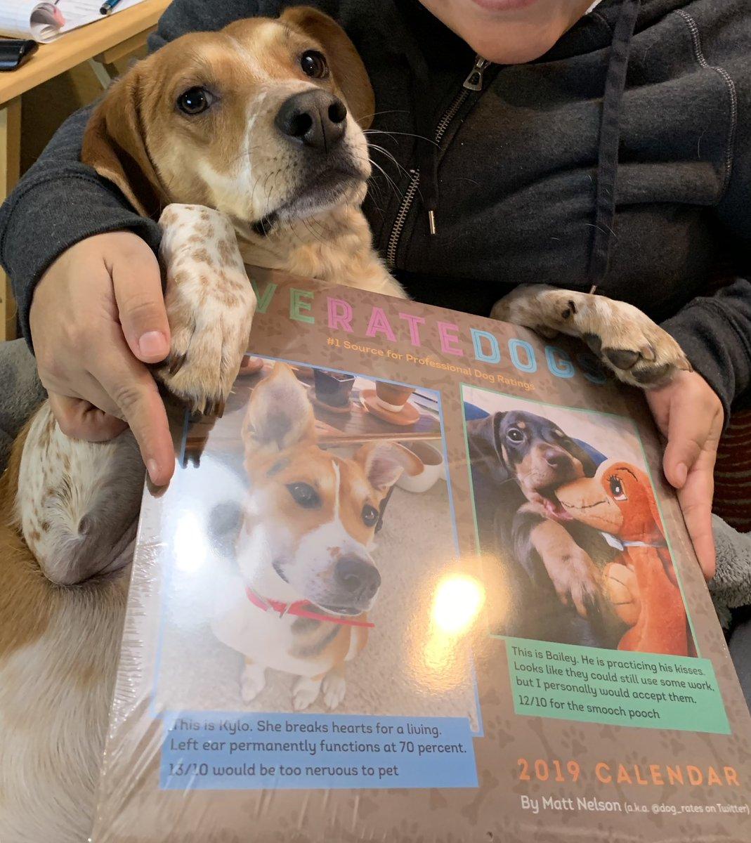 We got our calendar! @dog_rates