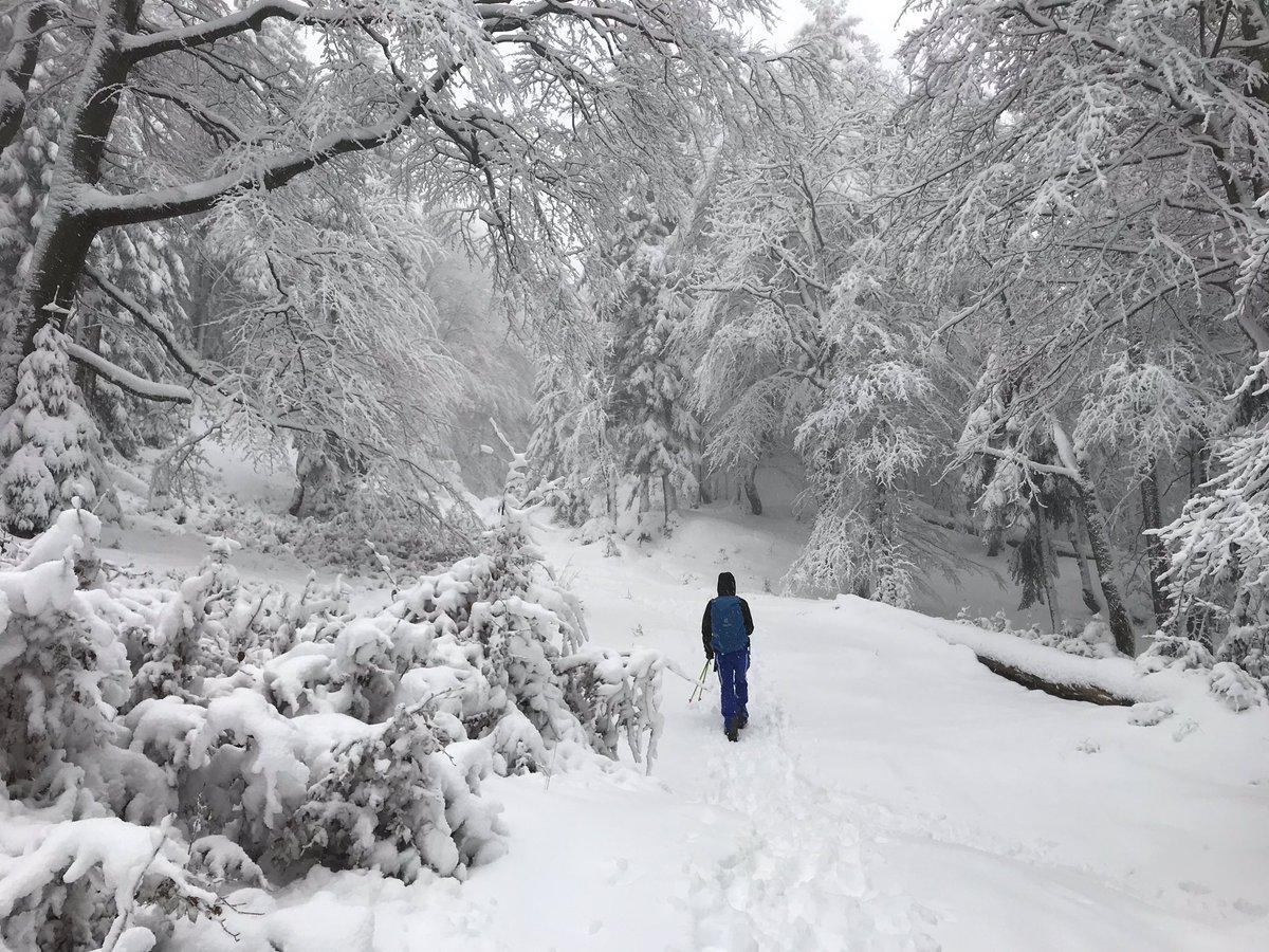 Endlich #tritraining im Schnee. #outofminga #hiking #alps #bavaria #alpen #bayern #spezitour #jochberg #bergtour #werdenfelserland #winterhiking #winterwandern