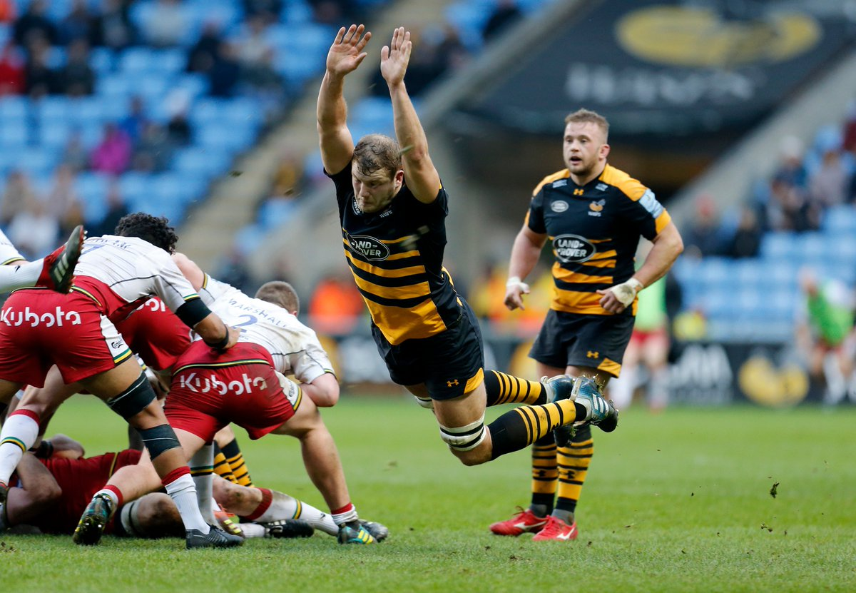 WaspsRugby