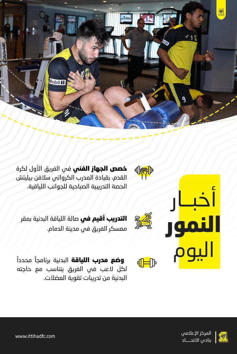 المركز الإعلامي/تقرير النمور اليوم الاثنين