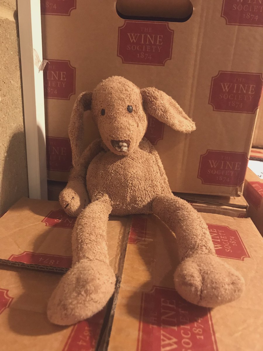 Found: this little guy was left in our Showroom over Christmas. We'd love to help reunite him with his owner! Anyone recognise him?