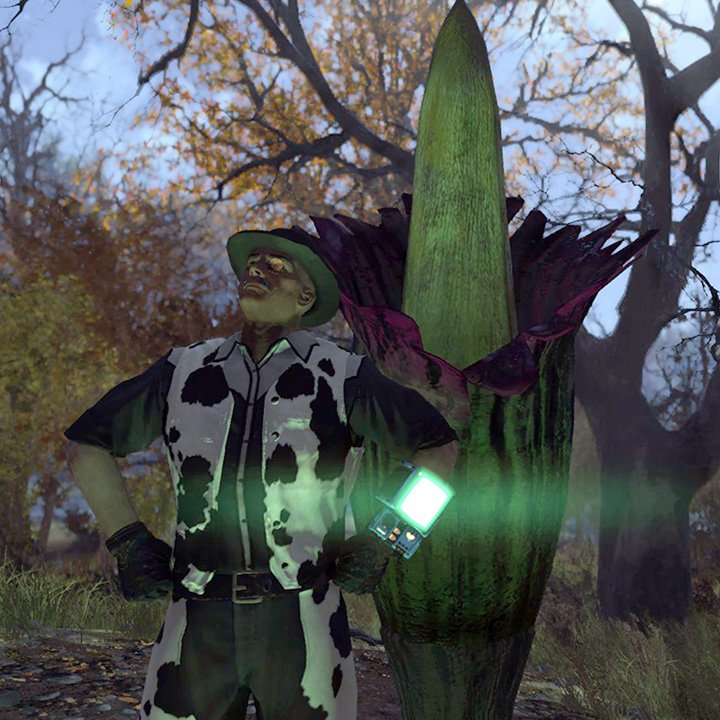 Corpse Flower Or Century Plant Fo76