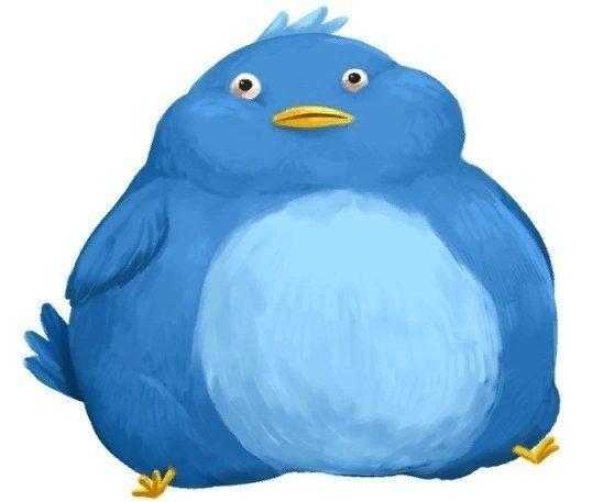 вот картинка где птичка толстая изобразить