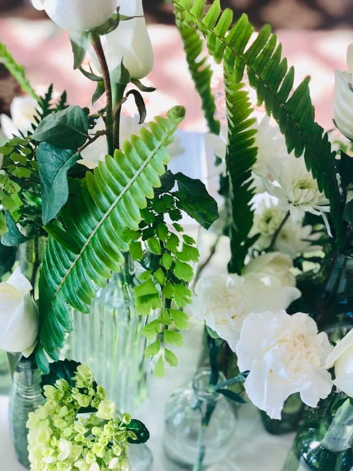 Lush greens with white accents Plaza Florist & Gifts 515.276.4951pic.twitter.com/MJ7xKp3JTc