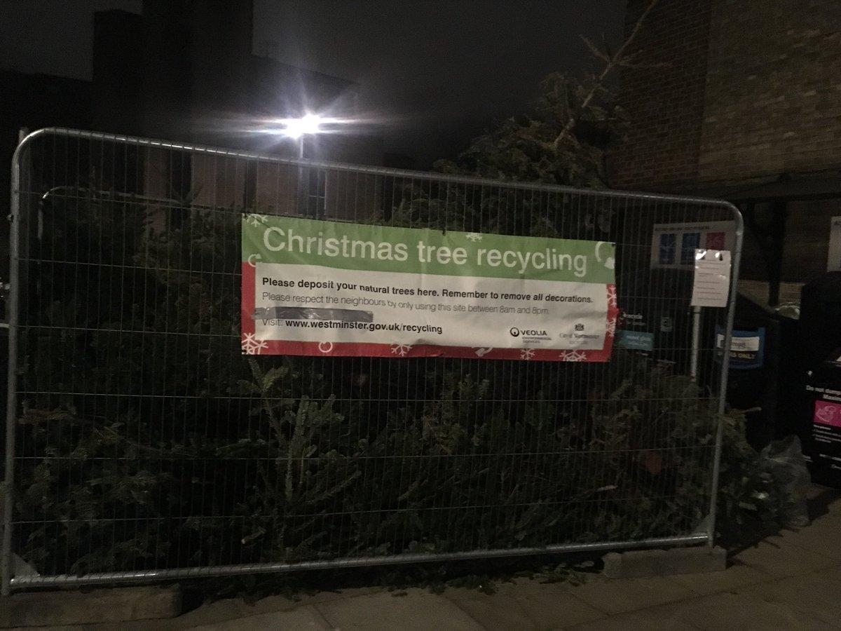 Jingle bells school parody