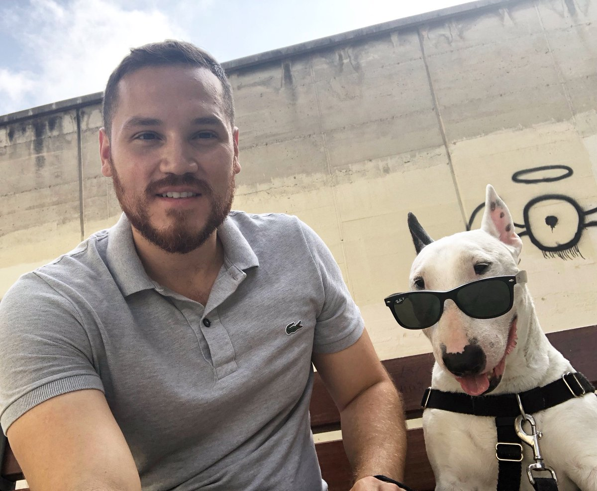 When you're just to cool to look at the camera  sometimes When my human asks me to look one way I like to look the opposite way  . . . #barcelona #dogsoftwitter #dog #bullterrier #bullies #dogsofinsta #puppers #puppy<br>http://pic.twitter.com/J9jato0yk7