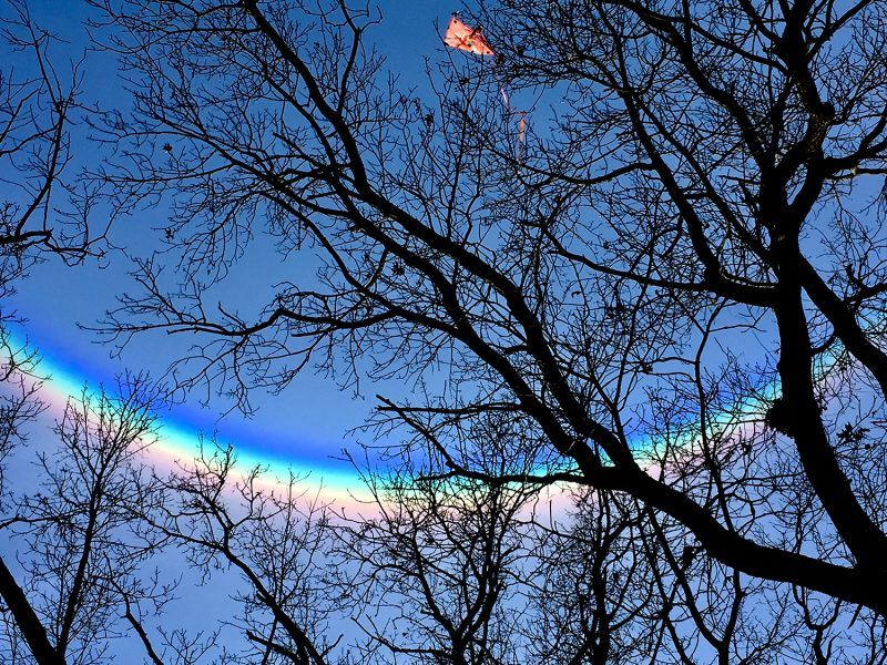 "David Lamberti caught this circumzenithal arc on January 6. ""It was a beautiful  day in southeast Michigan. I looked up, and there it was, a beautiful circumzenithal arc. It was enormous, and the colors were very deep. It faded within 5 minutes."" Read more http://bit.ly/2TQgafU"