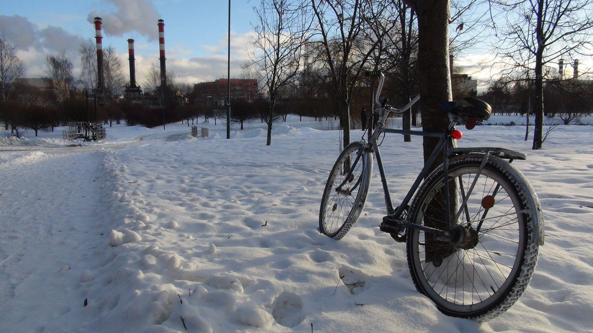 50% of this winter via bicycle. Yay!