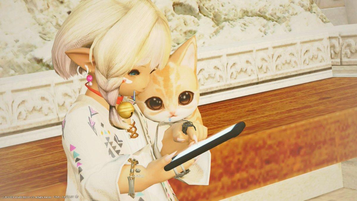 ほら見てごらん…TLがお魚だらけよ… (゚ー,゚*)ジュルルル  ニャァア…((*ΦωΦ)ジュルリ  誰を狙う( ⓛ ω ⓛ *)?  …夢の青魔道士が巷で大ブームの中、 密かに狙う2匹の猫…🐈  狙われるのはあなたかもしれない… (ΦωΦ)ฅニャー! #おはララ #ララフェル #ネコフェル